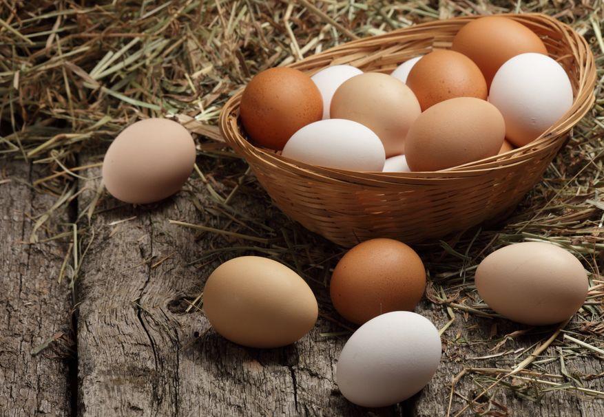 Jajko – 15 ciekawostek, które warto znać