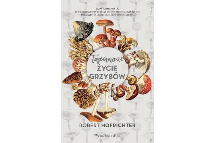 Recenzja książki: Tajemnicze życie grzybów – Robert Hofrichter