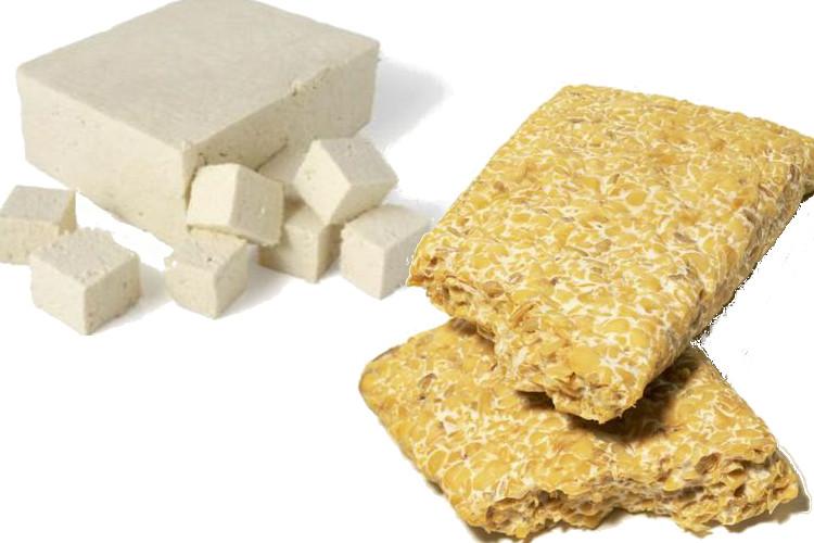 Tofu czy tempeh?