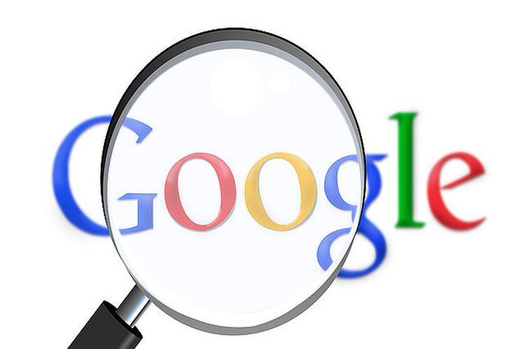 O co pytają Google studenci?