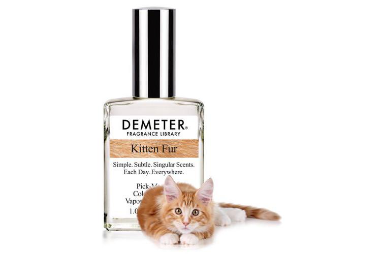 Chcesz pachnieć jak kot?
