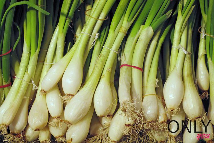 Jedz cebulę dymkę. To jedno z najzdrowszych warzyw!
