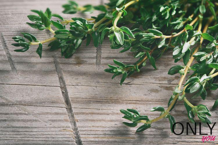 9 powodów, dla których warto jeść tymianek