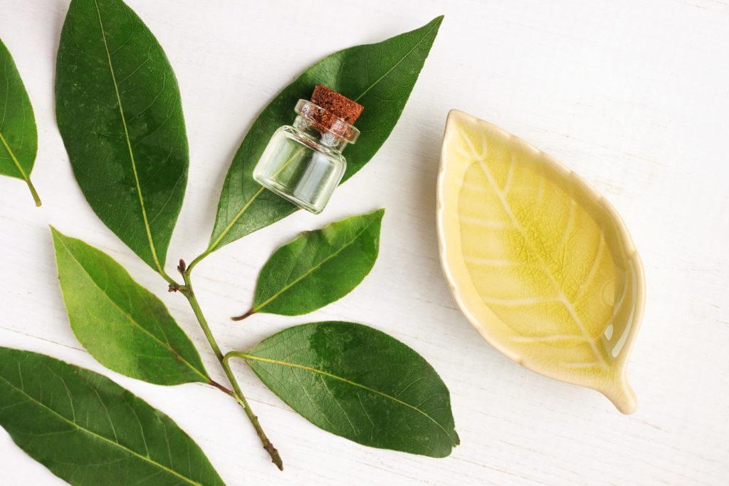 Kosmetyki wegańskie – czego w nich nie powinno być