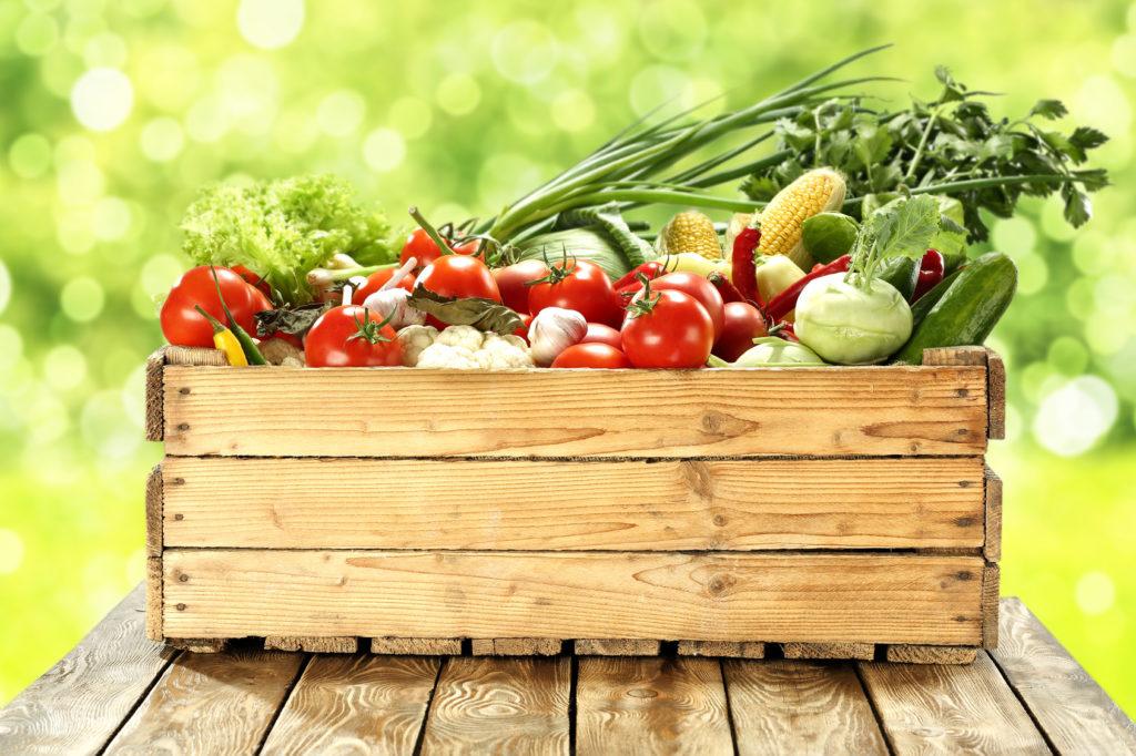 Dieta bezmięsna – czego nie może w niej zabraknąć
