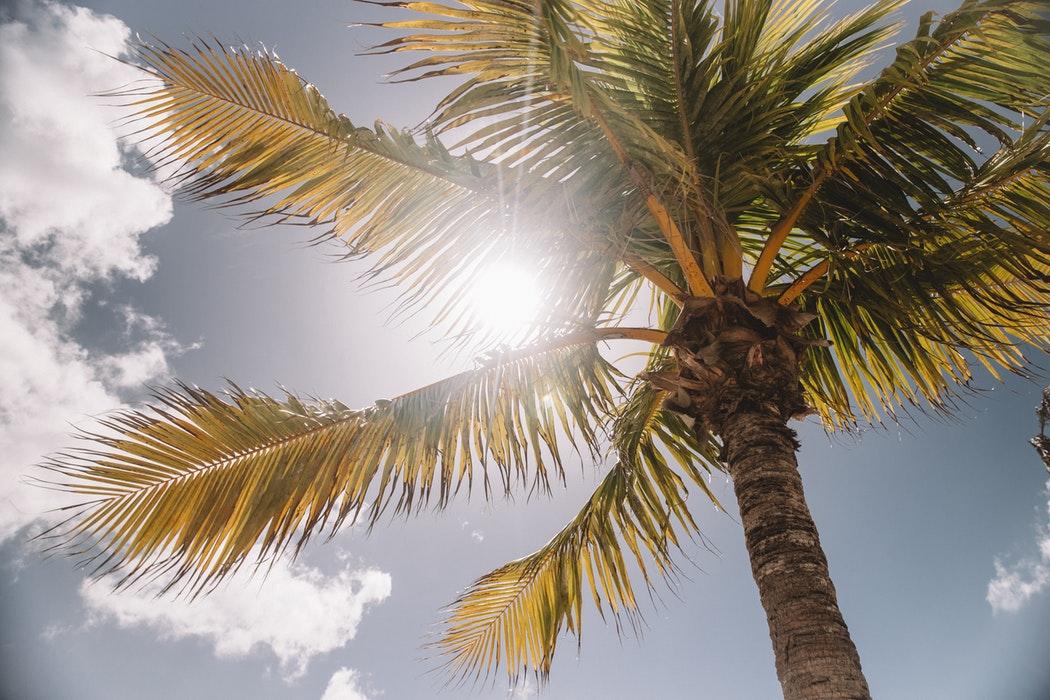Jak stosować ochronę przeciwsłoneczną