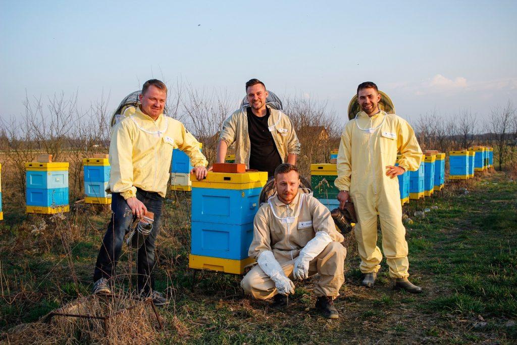 Miód od 50 milionów pszczół