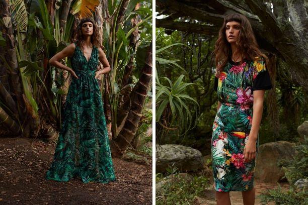 moda mohito wild nature