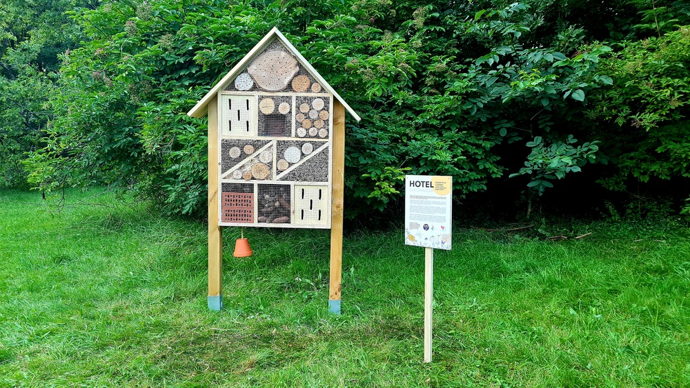 Hotele od Wedla dla pszczół
